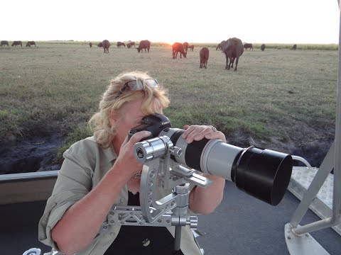 A message from Kathryn Haylett of Your Safari.