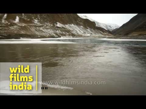 Source of Indus river in Ladakh (and how India got its name!)