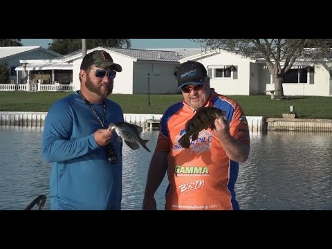 Osborne Chain Florida Fishing (Peacock Bass, Crappie, Largemouth, Striper, Clown Night)