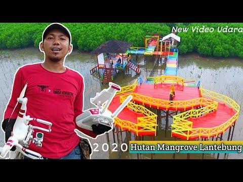 setelah-renovasi-wisata-mangrove,-video-udara-keren-...!!!-#rimbaadventure