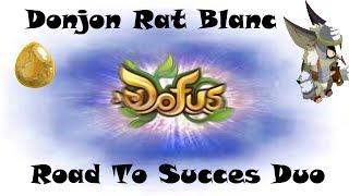 [Dofus] La route vers le succes Duo [Donjon Rat Blanc] ¤001¤