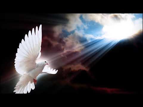 Andrea Bocelli & Sarah Brightman - Time To Say Goodbye (Con Te Partirò)