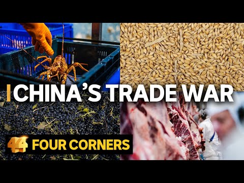Why is China punishing Australia? The human impact of the trade war   Four Corners