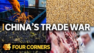 Why is China punishing Australia? The human impact of the trade war | Four Corners