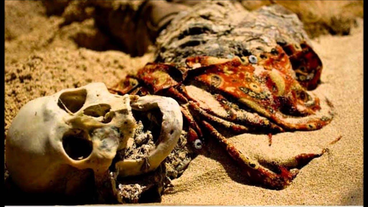 ontario human remains found - 1280×720