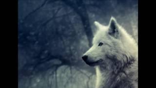 Ateş, Fırtına, Yağmur ve Kurt | Rahatlatıcı Doğa Sesleri