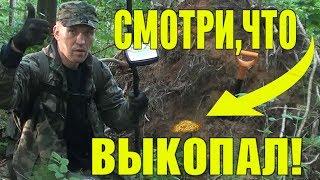 видео Поиск кладов в лесу