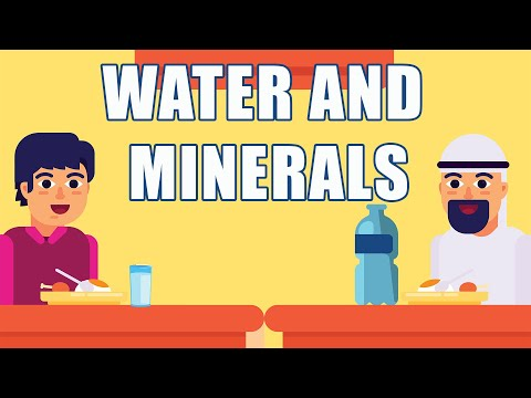 What is Water and Minerals?