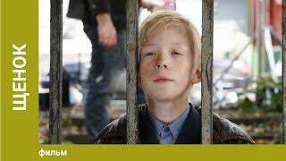 Щенок Детский фильм Семейное Кино