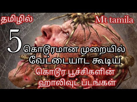 Download Top 5 best spider attack hollywood movie in Tamil  movies review mt tamila
