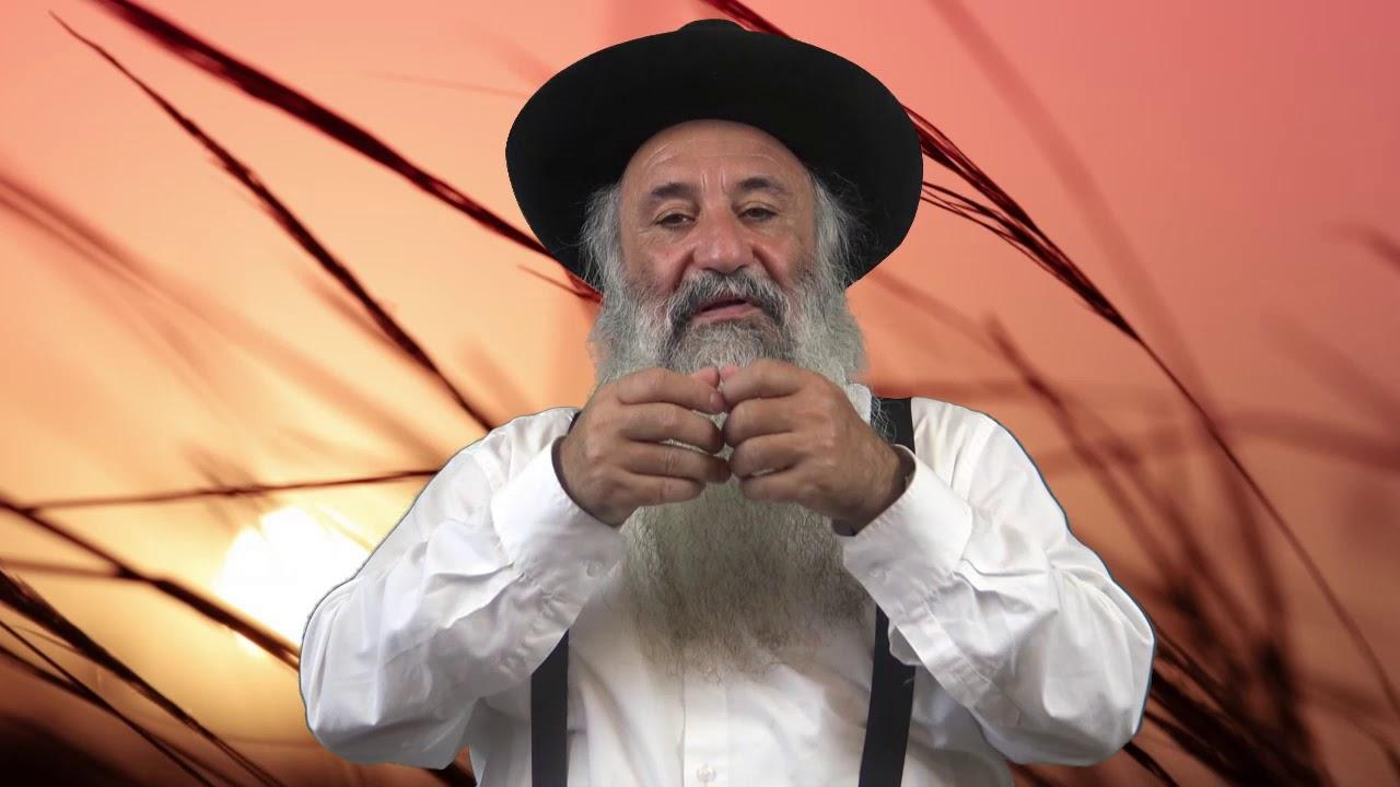 Lois de La Techouva N°7 - Rav Menahem Berros HD
