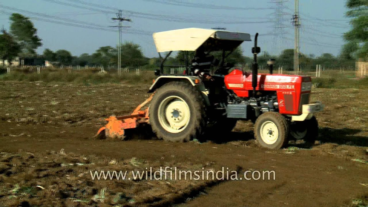 Swaraj 855 FE Tractor Being Used For Ploughing Field