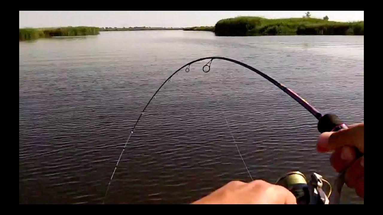 ловля рыбы в июне на спиннинг