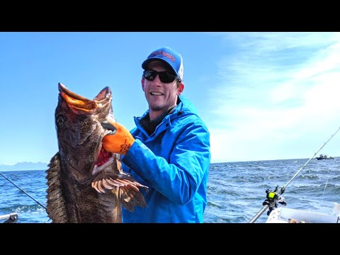 Fishing In Sitka Alaska For King Salmon, Halibut, And Ling Cod - (By Captain Cody)
