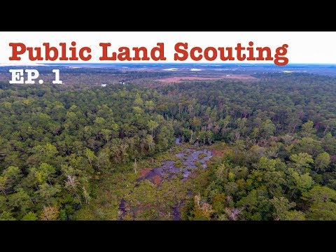 Public Pursuit S2 E1: Public Land Scouting For North Carolina Duck Opener