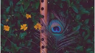Sataye menu kyu rulaye menu kyu status   Best flute status   #musicheal 💞 AB Edits07