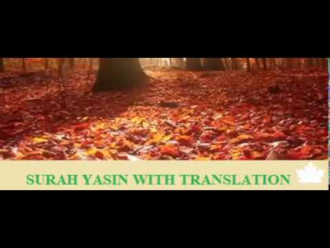 surah-yasin-with-urdu-translation.