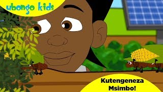 Ubongo Kids Webisode 50 - Kutengeneza Msimbo | Katuni za Elimu kwa Kiswahili