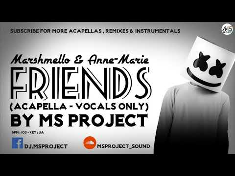 Marshmello & AnneMarie  Friends Acapella  Vocals Only