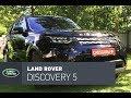 Land Rover Discovery 5 тест-драйв: породистый бездорожник