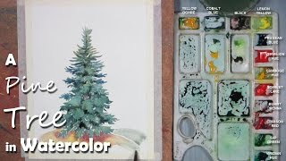 Watercolor Painting | Painting Pine/ Mountain/ Christmas Tree step by step