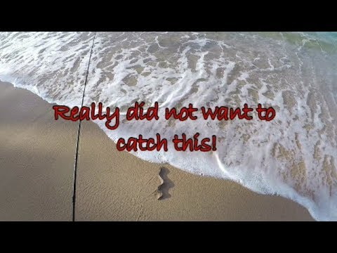 BEACH FISHING in ST. VINCENT & THE GRENADINES