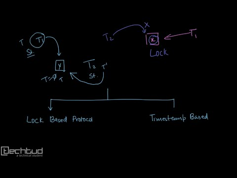 Introduction to Concurrency Control Protocol
