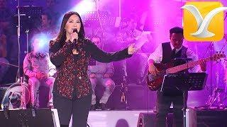 Ana Gabriel - Soy como quise ser - Festival de Viña del Mar 2014 HD