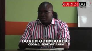 Green House farming in Nigeria