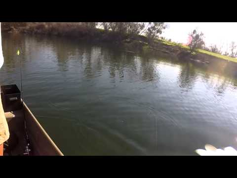 Central California pond bass fishing
