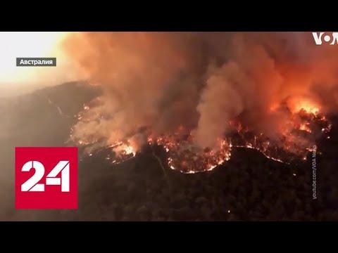 Огненный кошмар: почему горит Австралия - Россия 24