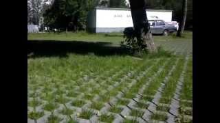 видео Георешетка полимерная: цена