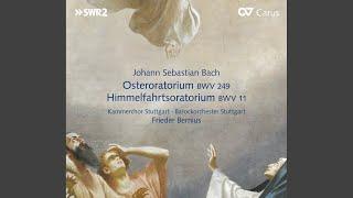 Oster-Oratorium, BWV 249: Aria. Seele, deine Spezereien