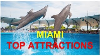 Visit Miami, Florida, U.S.A.: Things to do in Miami - The Little Cuba