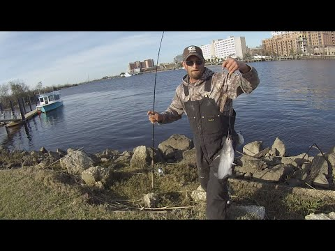 WILMINGTON NC CATFISHING