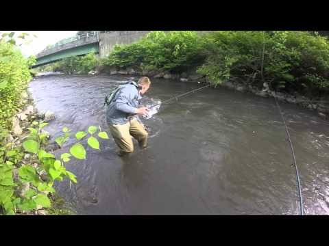 Full download fishing glade creek of new river in wv for for Trout fishing in wv