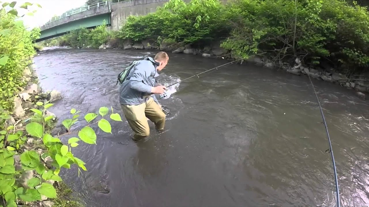 West virginia trout fishing elkhorn river youtube for Wv fishing license online