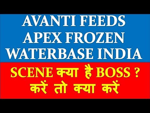 Avanti Feeds Apex Frozen Waterbase why is performing badly | detail analysis and future prospect