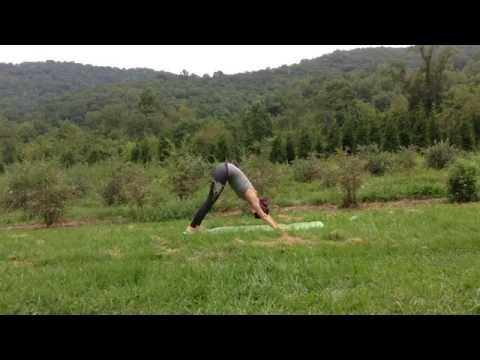 Ten Minute Yoga Sequence for the Post Traveler with Cara Edwards