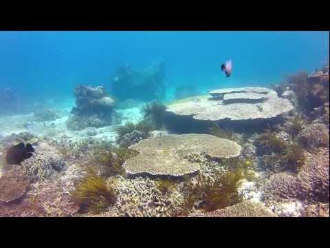 Diving in Blue Lagoon, Padang Bai, Bali, May 2012