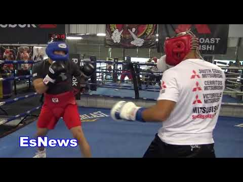 UFC Star vs Pro Boxer Jose Aldo Sparring Delgado At RGBA Looking Impressive EsNews Boxing