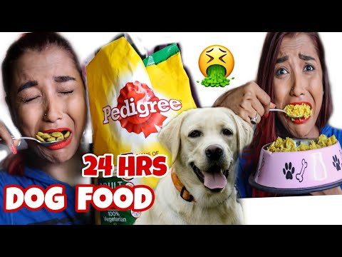 I Ate DOG FOOD For 24 HOURS - FULL DAY Eating DOG FOOD Only - IMPOSSIBLE Food Challenge INDIA