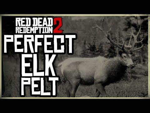HOW TO GET A PERFECT ELK PELT - RED DEAD REDEMPTION 2 PRISTINE ELK HUNT 3 STARS