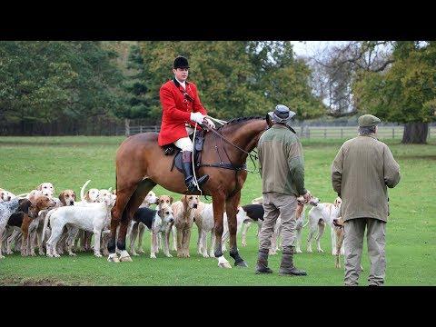 Fitzwilliam Opening Day Fox Hunt In Peterborough - Milton Park
