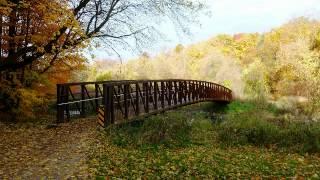 Uranak - Tutte Sperranze (Jesenje lisce)