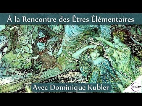 « A la rencontre des Élémentaires » avec Dominique Kubler - NURÉA TV