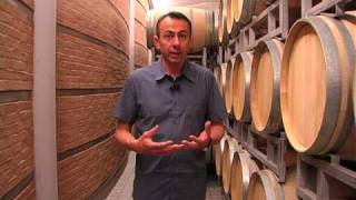 Introduzione al vino: il processo produttivo_uChef_TV