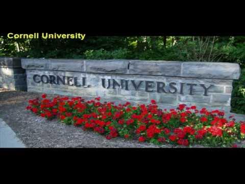 Cornell University Part 1  skyblue