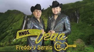 Hermanos Vega Jr. - Ignora mi llanto (Video Lyric)
