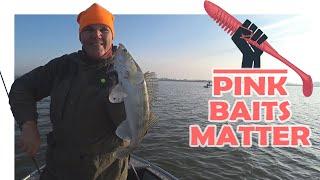 Розовые Приманки Имеют Значение Ловля Судака на Джиг Рыбалка 2020 Vovabeer
